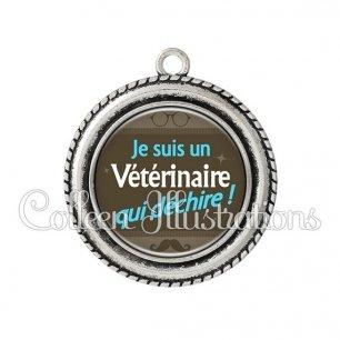 Pendentif résine Vétérinaire qui déchire (019MAR01)
